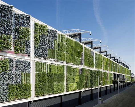 giardino verticale giardini verticali idee per realizzarli e quali piante