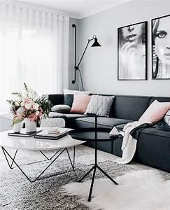 Salon Gris Et Rose : salon scandinave gris rose budget d co ~ Preciouscoupons.com Idées de Décoration