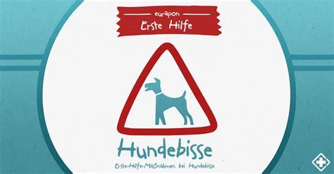erste hilfe bei hundebissen wundversorgung impfung und