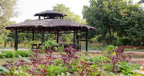 Organic Kitchen Garden Definition by Experience In Bandhavgarh National Park Lodge