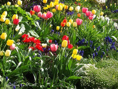 Garten Gestalten Ohne Viel Geld by 12 Tipps Wie Sie Den Garten 252 Ppig Gestalten Ohne Pleite Zu