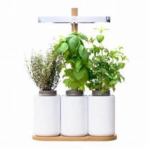 Mini Potager D Intérieur : mini potager d 39 int rieur lilo pr t pousser jardini res ~ Dailycaller-alerts.com Idées de Décoration