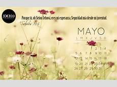 Imágenes de Bienvenido Mayo Felíz mes para compartir