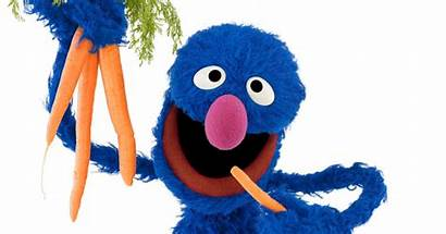 Grover Muppet Ask Answers Questions