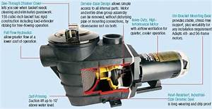 Hayward Super Pump Installation  U2013 Sethkarlo Info