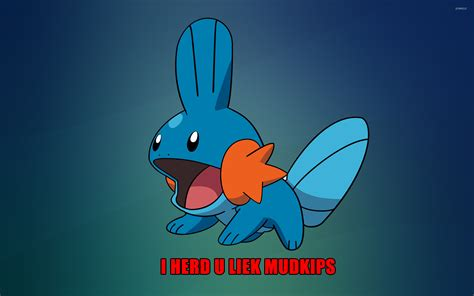 i herd u liek mudkips wallpaper meme wallpapers 9352