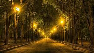 Street Lights In The Park HD Wallpaper Wallpaper Studio