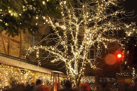Garten Berlin Weihnachtsbeleuchtung by Mitwachsende Lichterketten Momentum