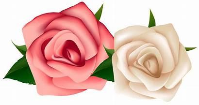 Roses Clipart Rosas Rosa Flores Rose Desenhos