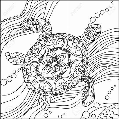 Turtle Coloring Pages Sea Adults Printable Realistic
