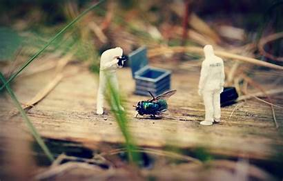 Crime Scene 500px Miniature Scenes Fotocommunity Diorama