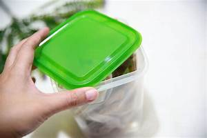 How to Keep Cookies Fresh: 10 Steps (with Pictures) - wikiHow  Keep