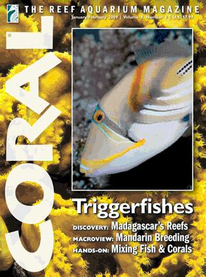 Aquascaping Magazine by Coral Magazine Announces 10 000 Marine Aquascaping