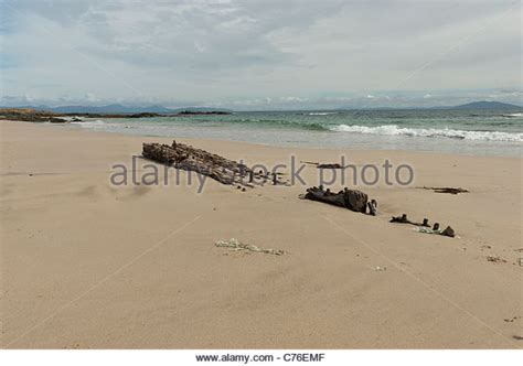 Brighton Fishing Boat Accident by Part Of Wreck Stock Photos Part Of Wreck Stock Images
