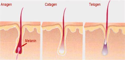 laser hair removal bellalaser