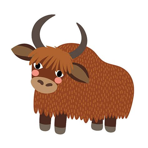 Yak Clipart Royalty Free Yak Clip Vector Images Illustrations