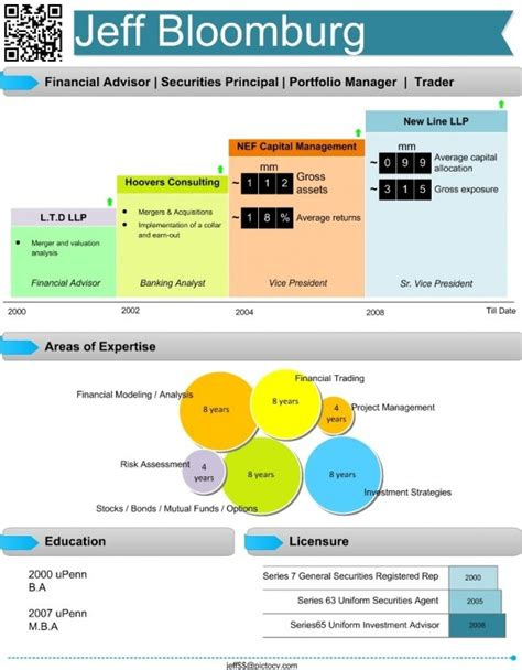 financial analyst visual resume infographic visual