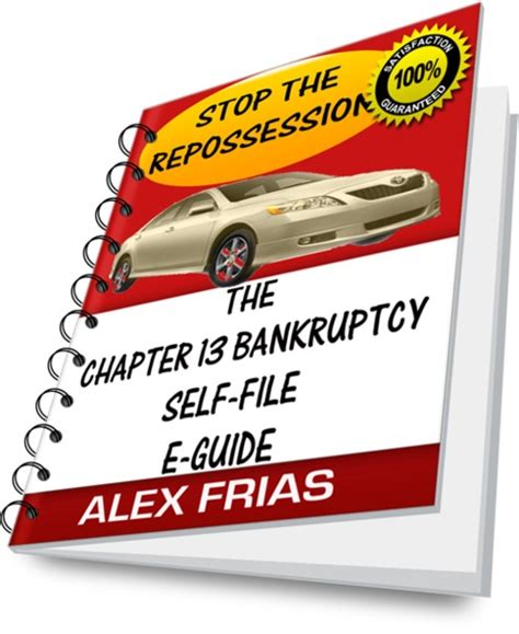 bureau ch麩e the chapter 13 bankruptcy self file e guide ebooks finance
