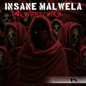 insane malwela  appreciation mix mp