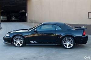 2004 Saleen S281 S/C Mustang for sale #14908 | MCG