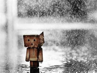 Wallpapers Rain Sad Danbo Mood Sorrow Dark