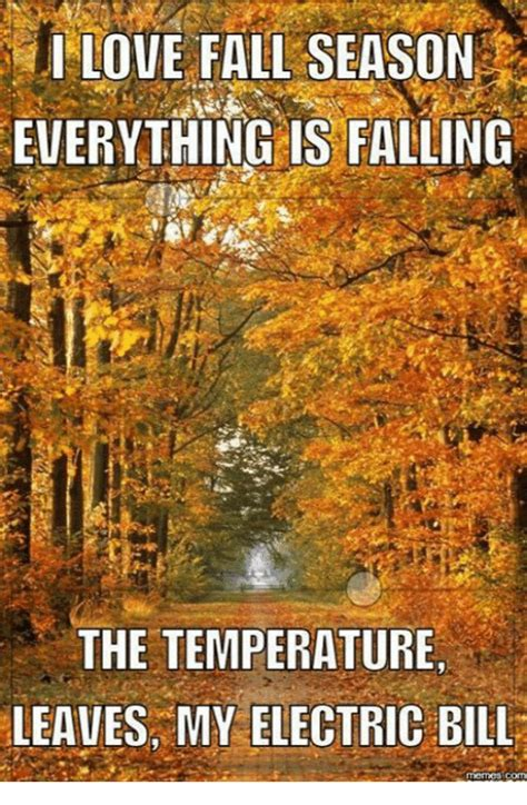 Funny Fall Memes - funny fall memes of 2017 on sizzle winning meme