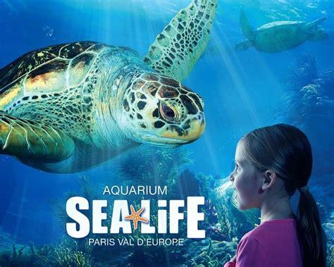 aquarium sea adulte et enfant marne la vall 233 e