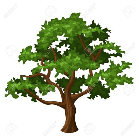 tree clipart deciduous trees clipart clipground