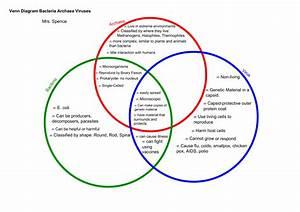 Bacteria And Virus Venn Diagram