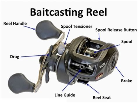 fishing tips  spinning reel