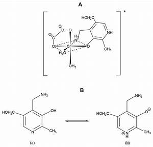 A  Structure Of The Synthesized Coordination Compound Of