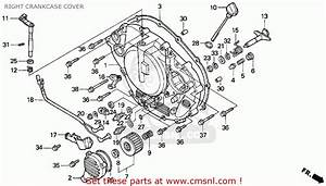 Honda 400ex Starter Diagram  Honda  Free Engine Image For User Manual Download