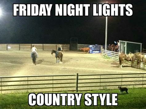 Friday Night Lights Meme - 85 best horse memes images on pinterest equestrian quotes horse quotes and funny horses