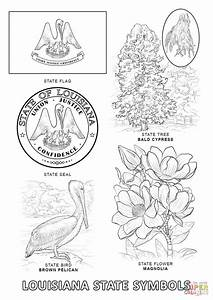 Louisiana State Symbols coloring page | Free Printable ...