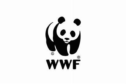 Wwf Hypebeast Transforming Panda Nov Arts