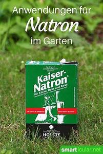 Asche Gut Für Pflanzen : 6 clevere anwendungen f r natron im garten natron puder und haushalte ~ Markanthonyermac.com Haus und Dekorationen