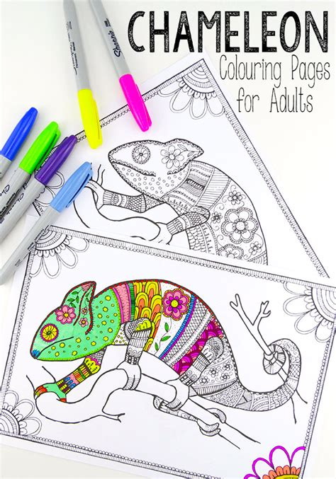 colouring pages  grown ups chameleons red ted arts blog