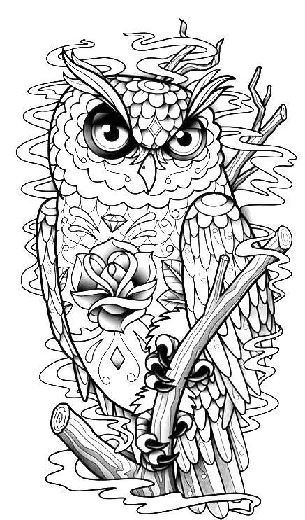 owl coloring page | Owl coloring pages, Animal coloring