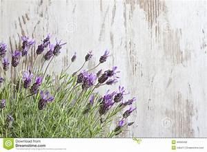 Lavender Flowers On Vintage Wooden Boards Background Stock ...