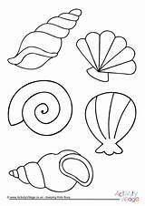 Colouring Shell Coloring Sea Seaside Shells Seashell Colour Drawing Activityvillage Da Crafts Felt Para Mermaid Mar Fish Become Member Log sketch template