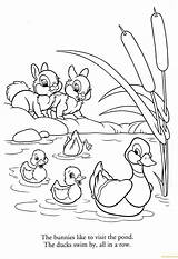 Ducks Coloring Bunnies sketch template