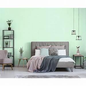 Schöner Wohnen Wandfarbe : sch ner wohnen wandfarbe trendfarbe macaron 2 5 l matt ~ Watch28wear.com Haus und Dekorationen