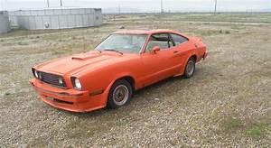 Sweet Tangerine: Ford Mustang II King Cobra