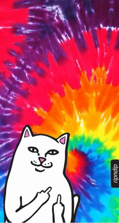 Wallpapers Ripndip Iphone Backgrounds Finger Middle Aesthetic
