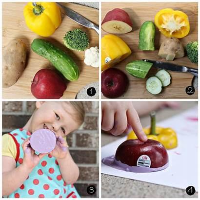 Vegetable Fruit Stamping Vegetables Activity Preschool Fruits