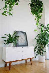 home interior plants give space to the green even in small apartment room decorating ideas home decorating ideas