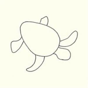 Draw a Sea Turtle in 3 Easy Steps | Turtle, Easy and Rock ...