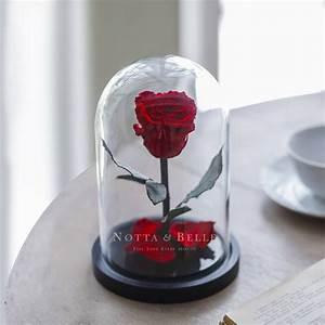 Rose Eternelle Sous Cloche : acheter une rose ternelle rouge mini sous cloche notta ~ Farleysfitness.com Idées de Décoration
