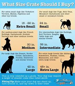 crate size for your dog measuring charts pinterest With dog cage sizes