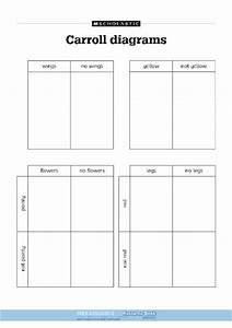 Carroll Diagrams  U2013 Free Primary Ks1 Teaching Resource